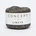LINCYS 302