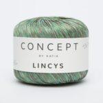 LINCYS 305